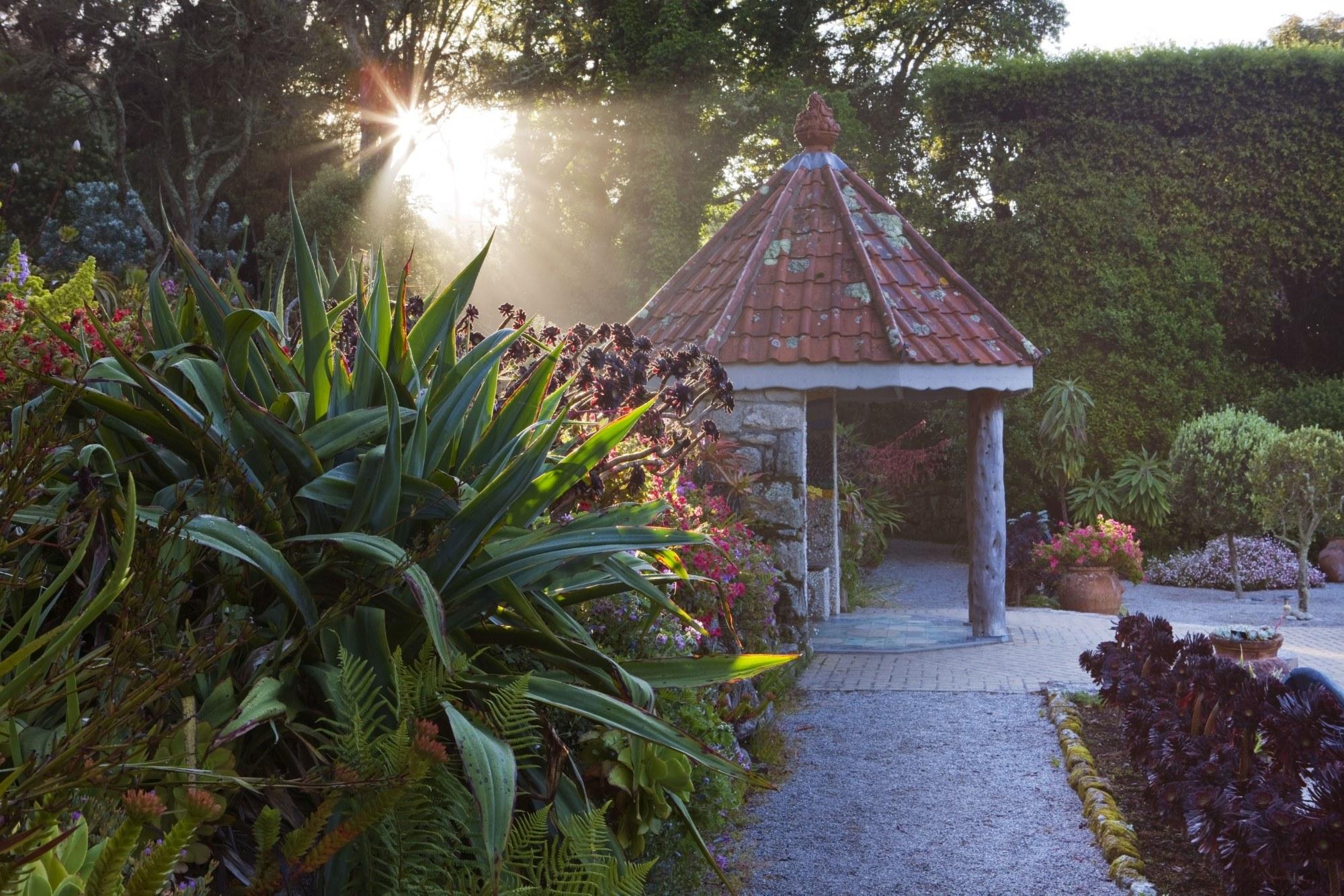 Tresco Abbey Garden Clive Nichols Web Res 3