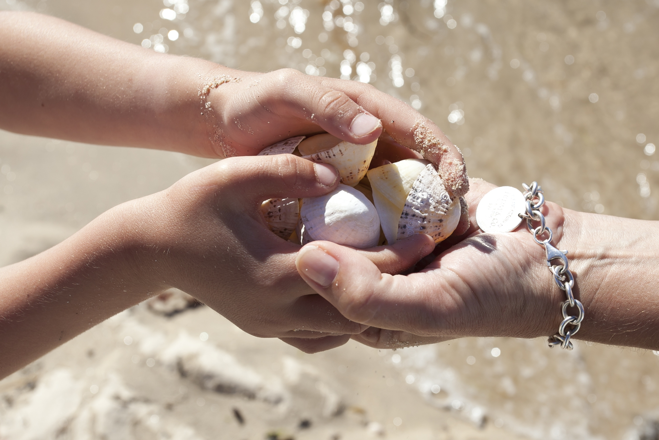 Tresco Island Gift Vouchers
