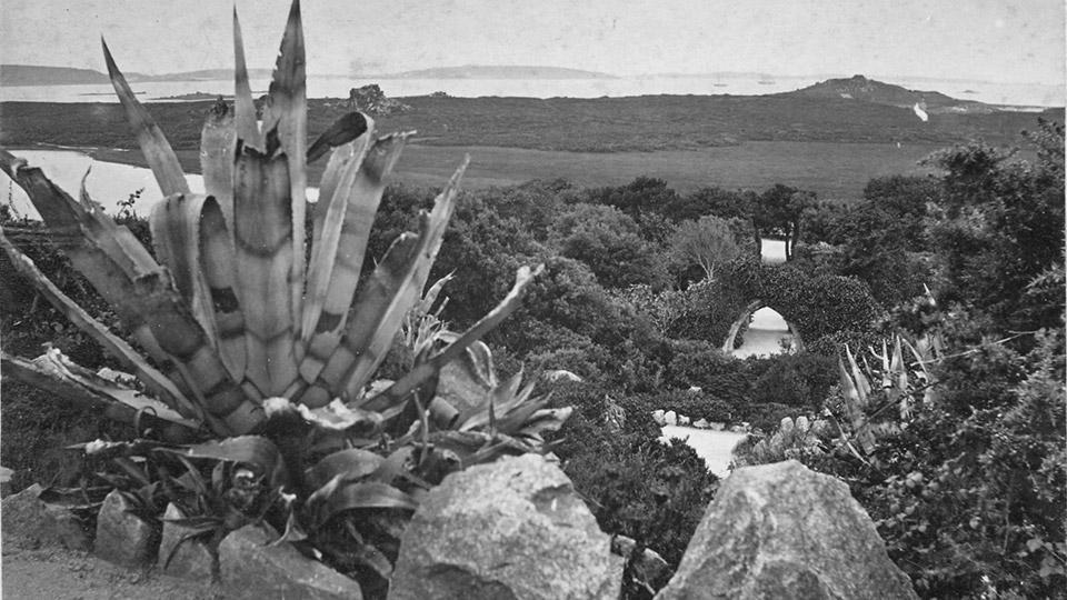 Tresco Island Abbey Gardens History 960x540 4